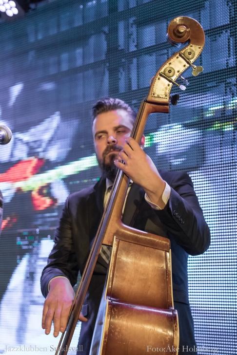 Mikko Auora-1